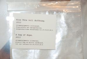 A bag of Hope, 2013