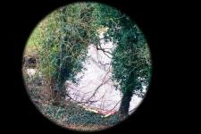 To a Pretty View, 2002